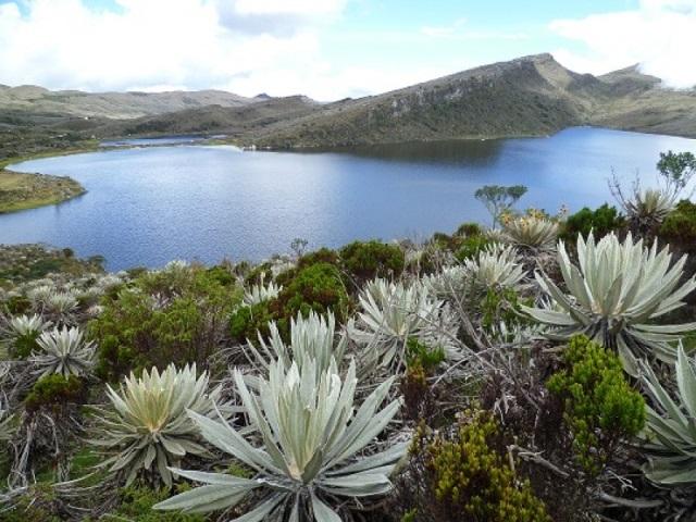 Parque Nacional Natural Sumapaz, el páramo más grande del mundo
