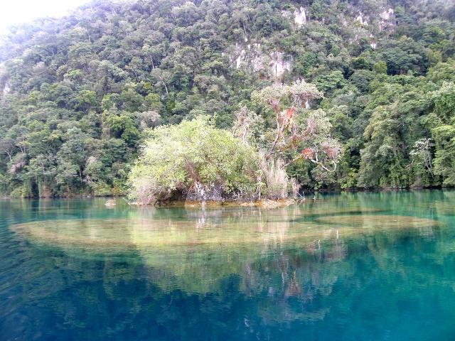 Conozca las bellezas naturales de Chiapas
