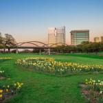 Visite la hermosa ciudad de Fort Worth
