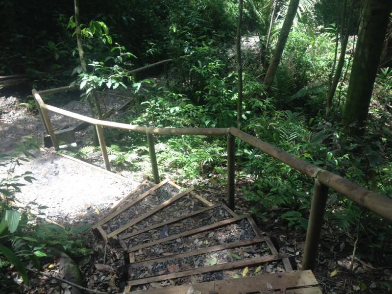Parque Nacional Manuel Antonio: uno de los paisajes más impresionantes de Costa Rica