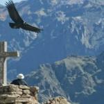 Conozca el Valle del Colca, uno de los lugares turísticos del Perú más impresionantes