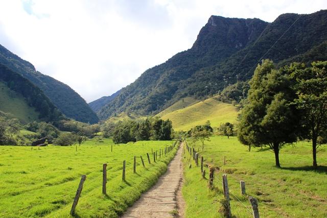 Sitios turísticos del Quindío: Salento y el valle del Cocora