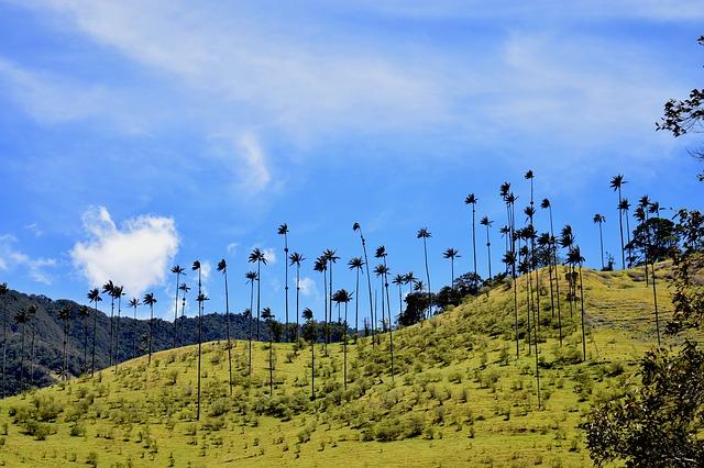 10 lugares para visitar en Colombia
