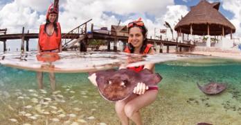 Snorkel en Cozumel con Mantarrayas
