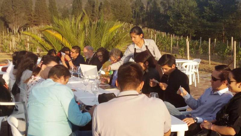 Viñedos en Colombia: turismo enológico