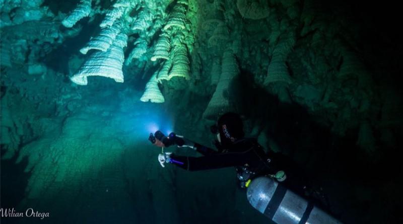 Buceo en cenotes, una de las excursiones en la Riviera Maya más emocionantes