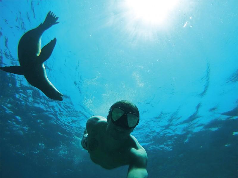 Atracciones en Baja California Sur: isla Espíritu Santo