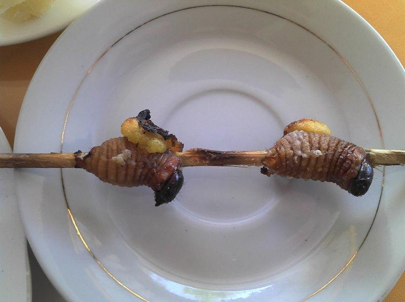 Grilled_palm_maggots,_Ecuador
